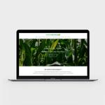 CC Digital Marketing profile image.