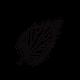 The Nettle Practice logo