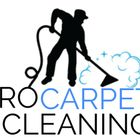 Pro Carpet Cleaner