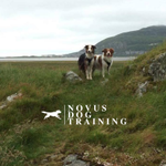 Novus Dog Training profile image.