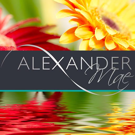 Alexander Mae (Bristol) Ltd
