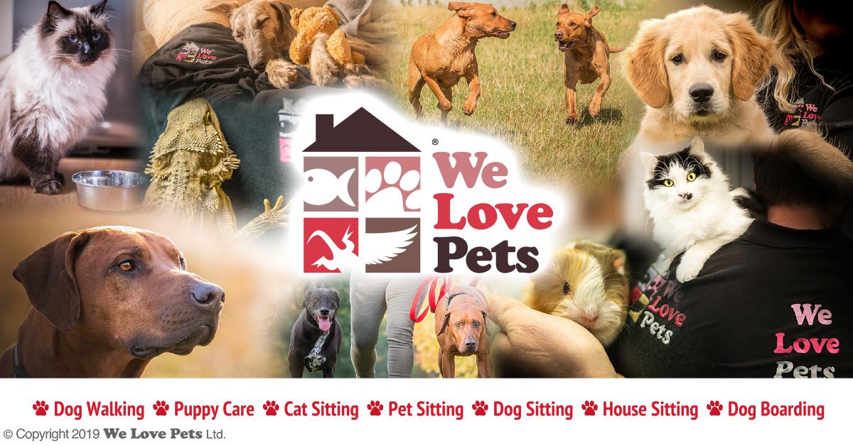 We Love Pets Solihull - Dog Walker, Pet Sitter & Home
