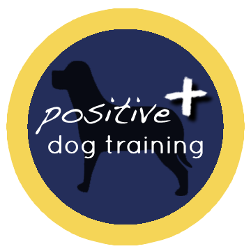 Find the best dog trainers in haywards heath bark solutioingenieria Choice Image